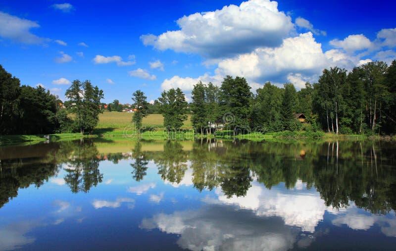 池塘夏天 库存图片