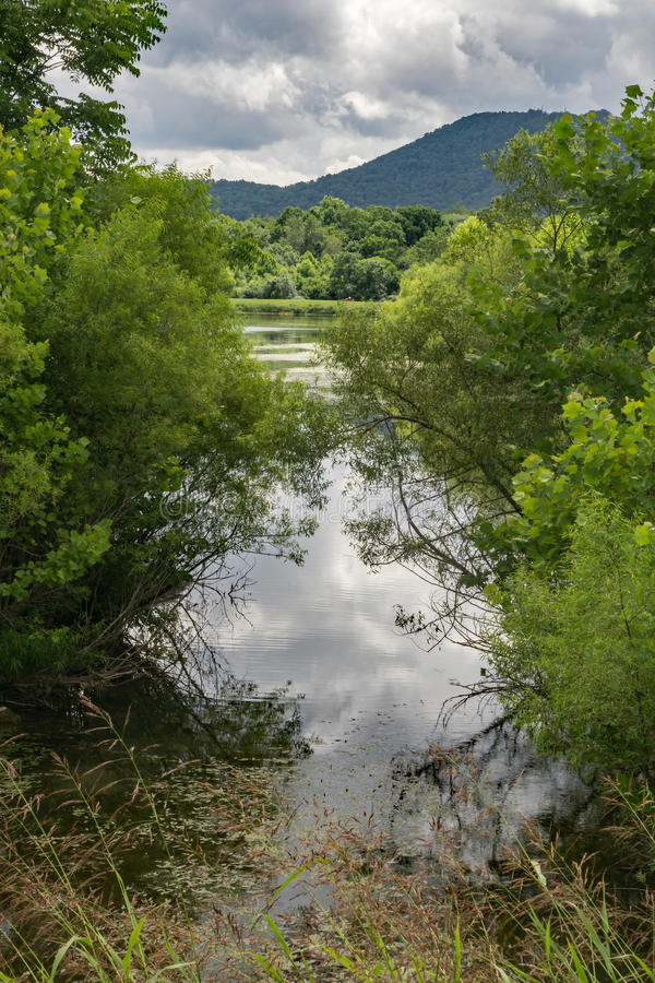 池塘有山背景 免版税库存照片