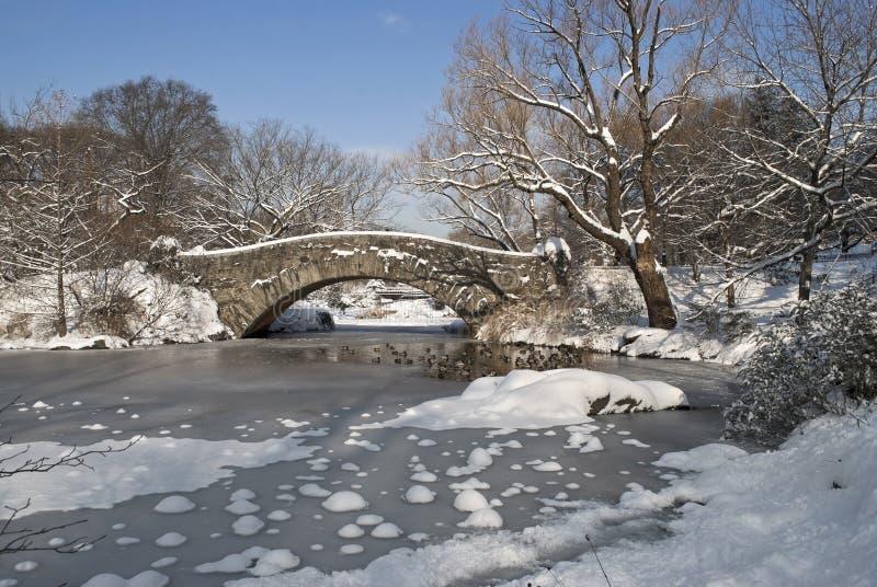 池塘雪 免版税库存图片