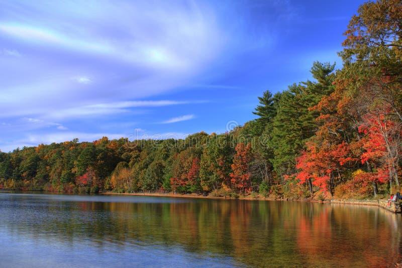 池塘walden 库存图片