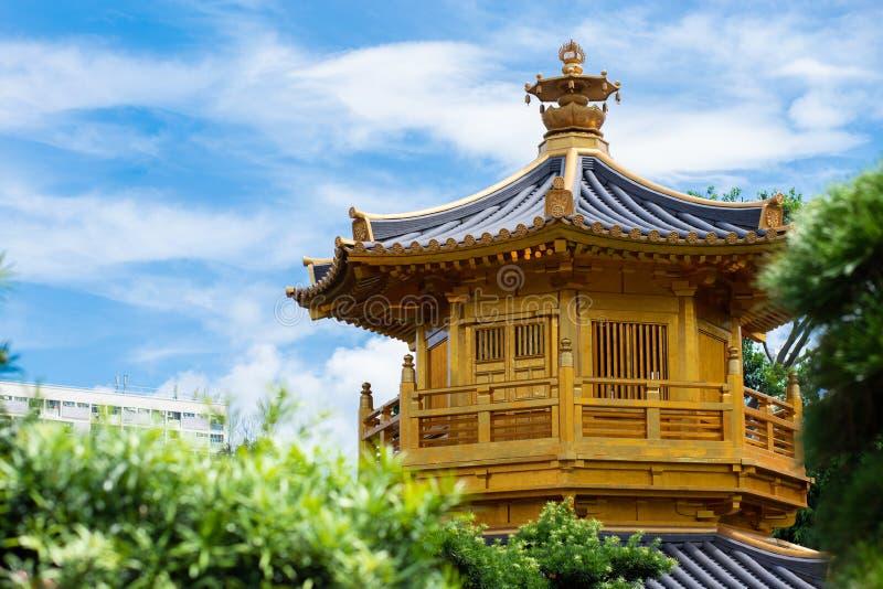 池氏林女修道院和南Lian庭院 绝对完美金黄亭子在南Lian庭院里在池氏林女修道院,香港, 库存图片