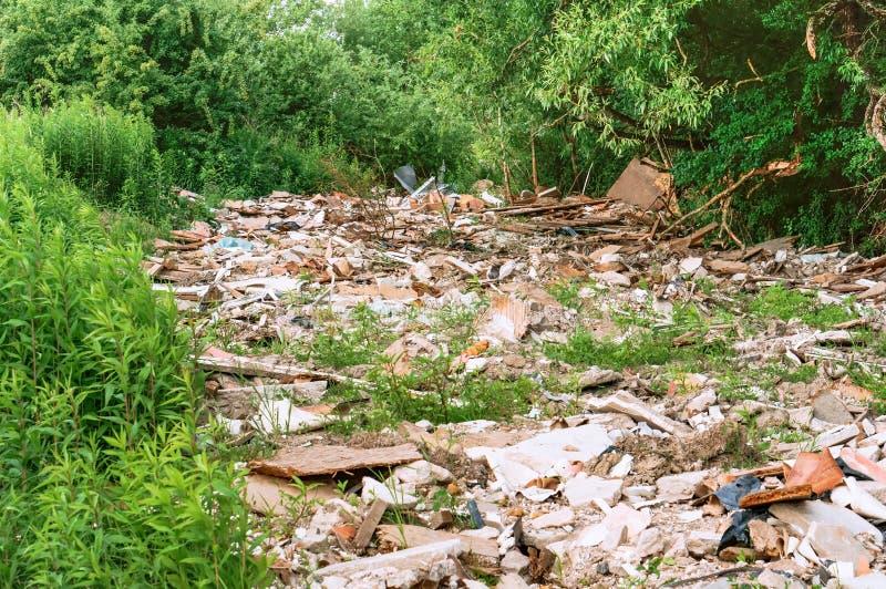 污染在森林里,从人类活动的垃圾 免版税库存图片