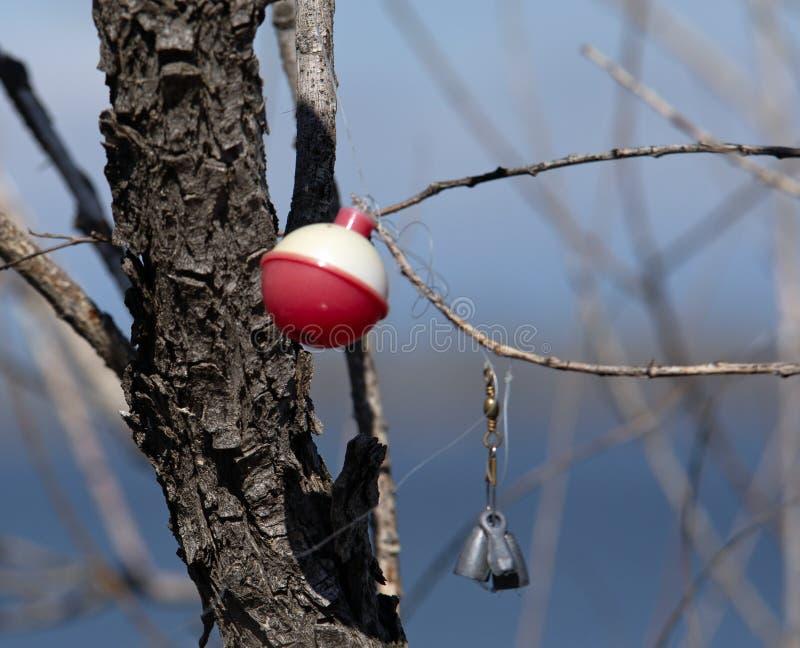 污染树的渔具 免版税库存照片