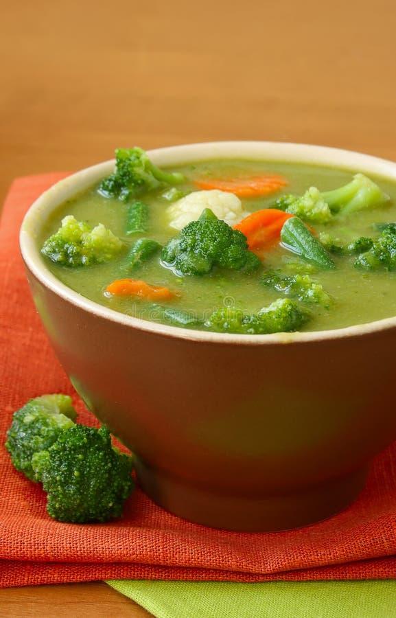 汤蔬菜素食主义者 免版税库存照片