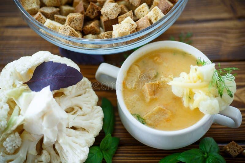 汤被制成菜泥的花椰菜 免版税库存照片