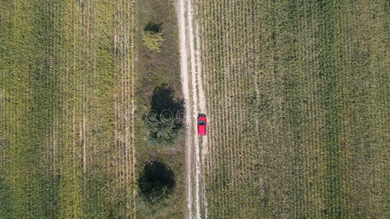 汽车在路驾驶在两个大领域之间用绿色麦子 农业横向 图库摄影