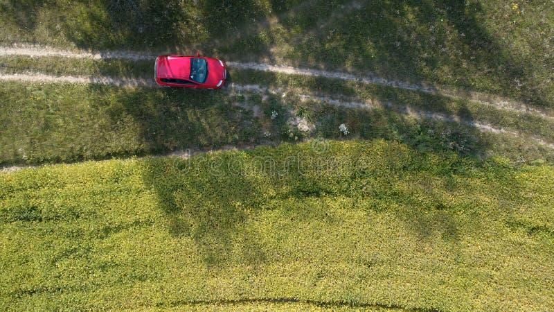 汽车在路驾驶在两个大领域之间用绿色麦子 农业横向 免版税库存图片