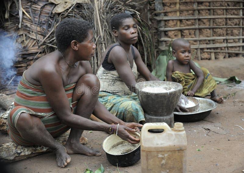 汽车密林  闹事 2008个第2个非洲非洲baka中央女孩密林11月共和国部落白人妇女 鲍卡妇女烹调食物,击碎在灰浆的面粉 免版税库存照片
