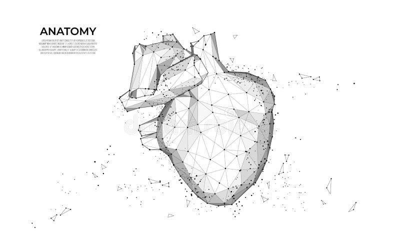 汽车导航wireframe概念 ?? 未来派巧妙的汽车 车wireframe概念 多角形传染媒介设计 滤网艺术 库存例证