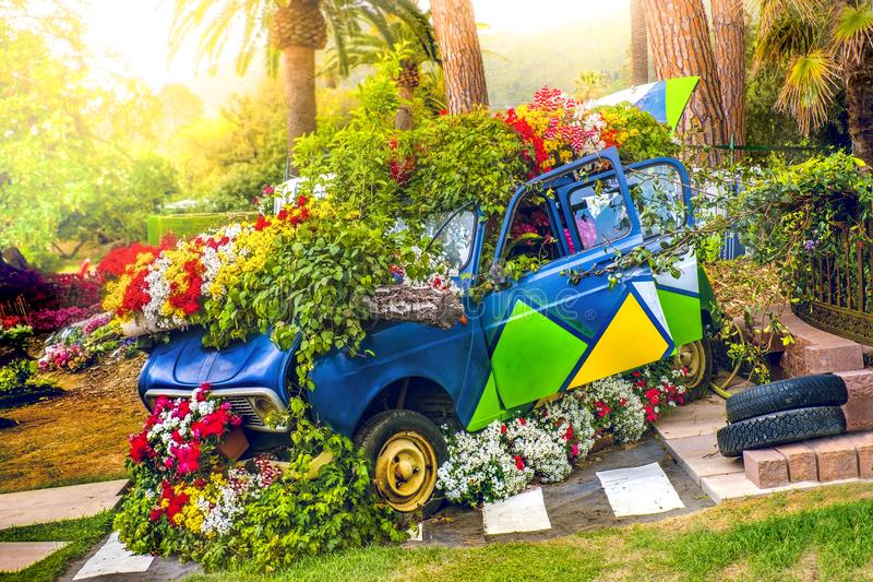 汽车开花在春天鼓吹爱情与和平的嬉皮士绿色车的生态概念 免版税库存照片