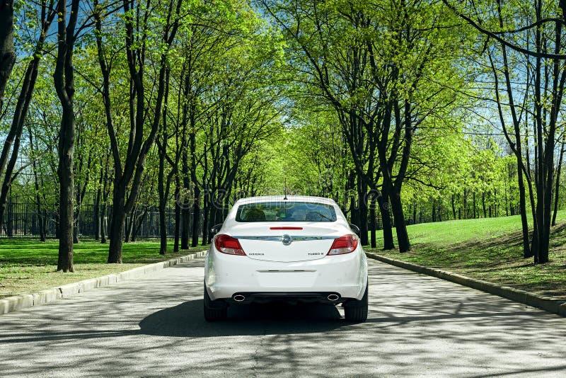 汽车欧宝权威在柏油路站立在绿色森林里在白天 库存图片