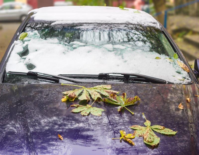 汽车的片段,报道用下落的叶子和雪 免版税图库摄影