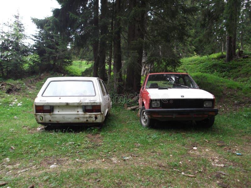 汽车的白色和红色击毁在forrest离开 免版税图库摄影