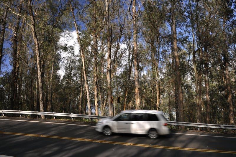 汽车移动白色 库存图片