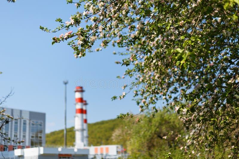 汽轮机天然气的能源厂与红白的颜色烟囱反对天空蔚蓝的在苹果树 免版税库存照片