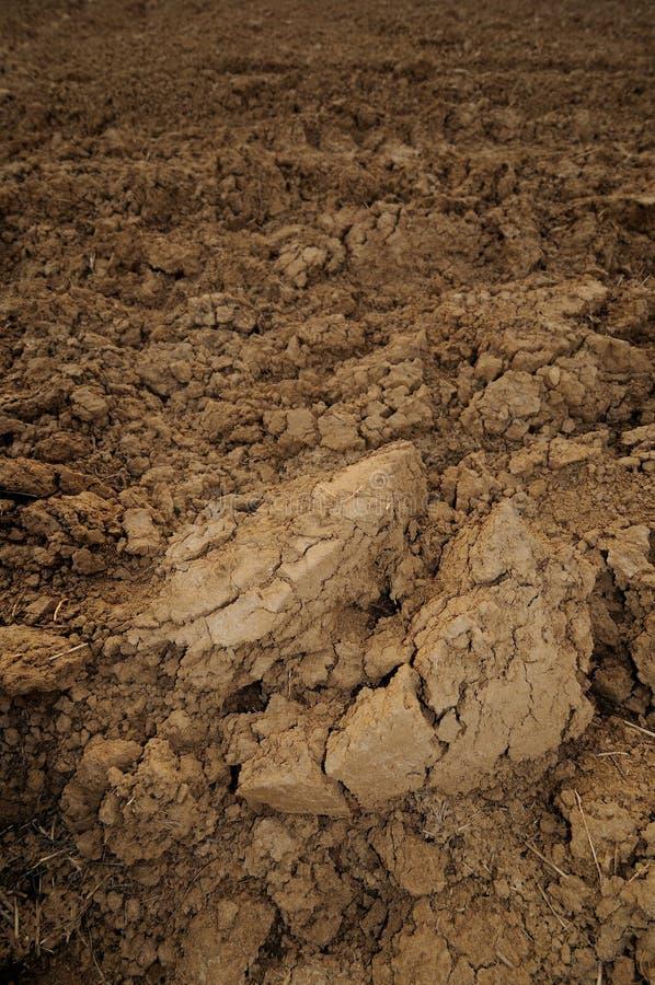 沃土的土壤 免版税库存图片
