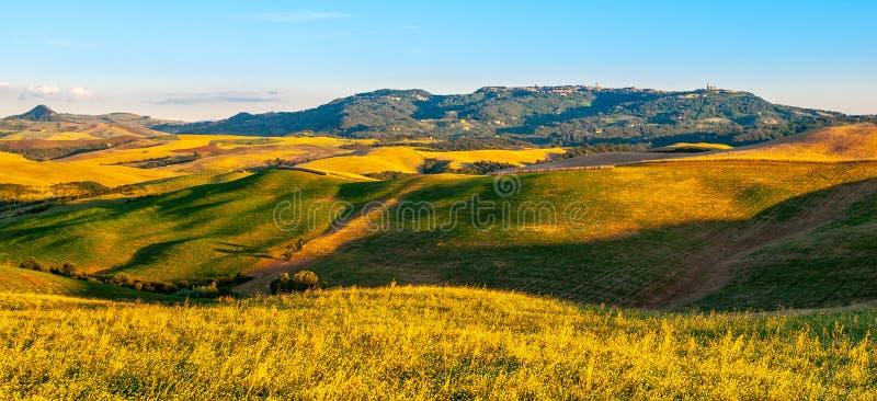 沃尔泰拉和surronding的托斯坎多小山风景,托斯卡纳,意大利全景  库存照片