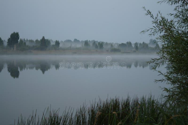 水沈默光滑的表面在河 免版税库存图片