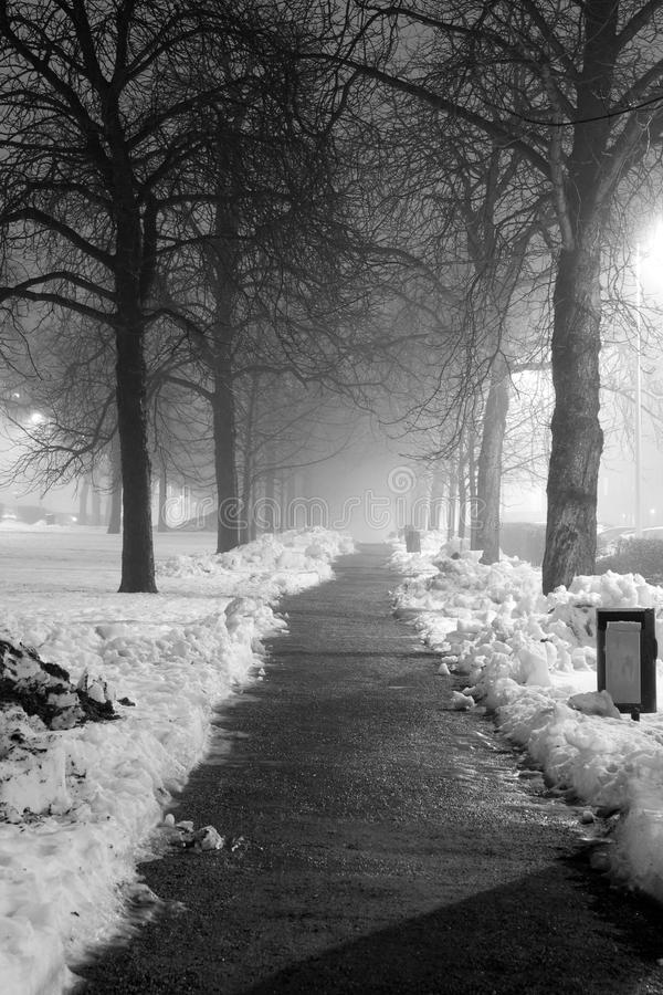 阴沉的夜在公园 免版税库存图片