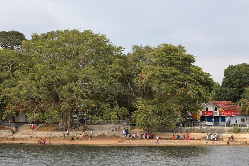 沐浴在Tissamaharama Tissa湖  图库摄影