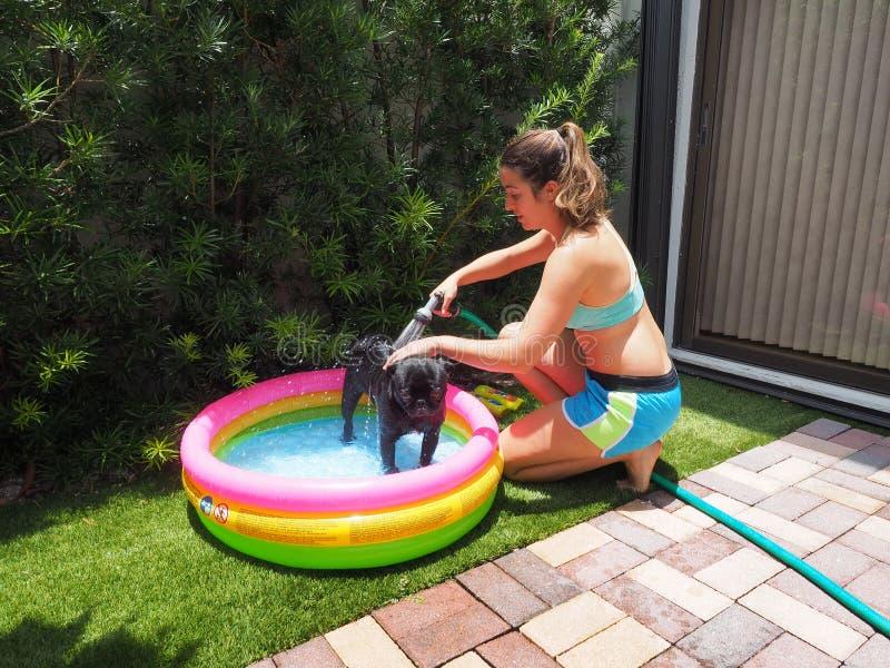 沐浴她的黑哈巴狗的年轻女人在一个五颜六色的可膨胀的水池 库存图片