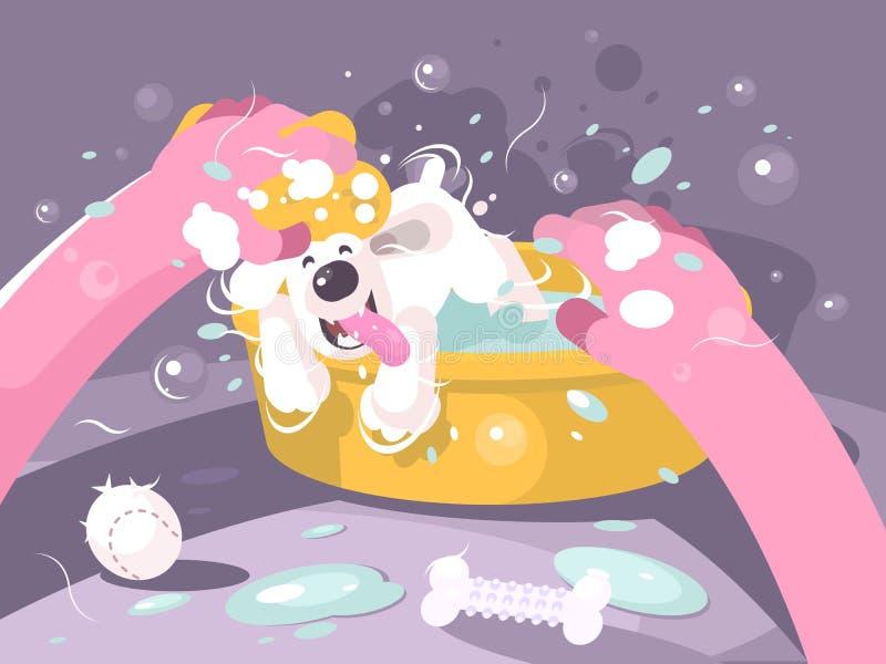 沐浴狗在水池用水 皇族释放例证