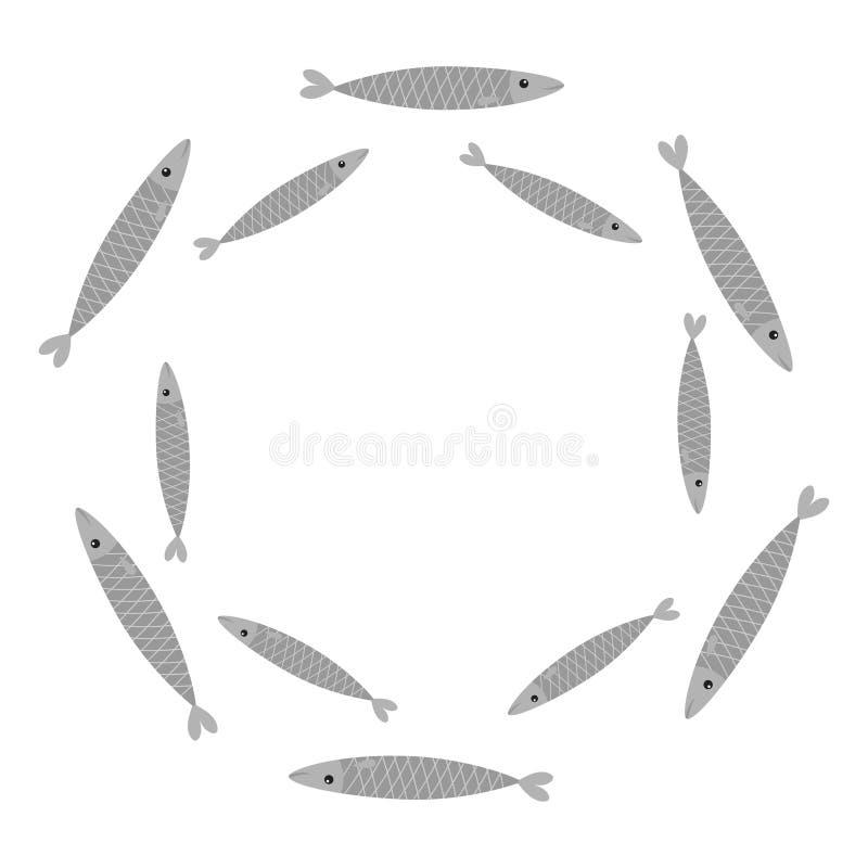 沙丁鱼灰色鱼集合 Iwashi 沙丁鱼pilchardus学校 皇族释放例证