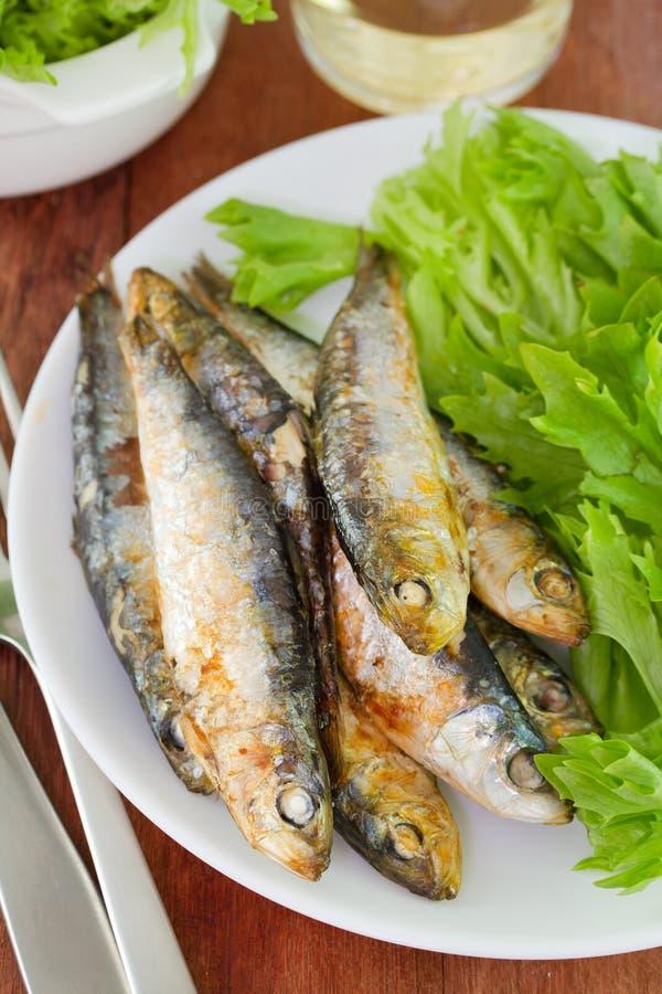 沙丁鱼用沙拉和玻璃 免版税库存图片