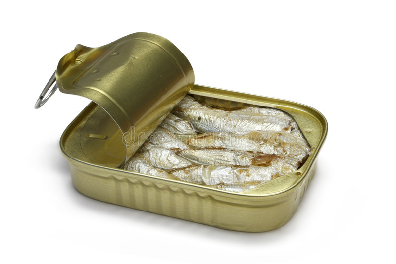 沙丁鱼 库存图片