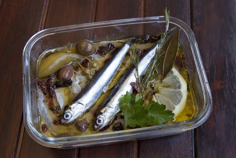 沙丁鱼carpaccio用地中海草本 库存照片