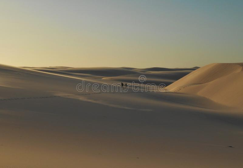 沙丘和雨水自然水池在Lençois Maranhenses沙漠在巴西 库存照片