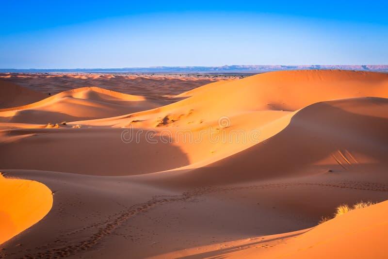 沙丘在撒哈拉大沙漠, Merzouga,摩洛哥 免版税库存图片