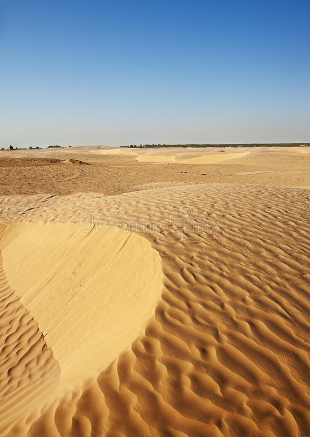 沙丘在撒哈拉大沙漠 免版税库存照片