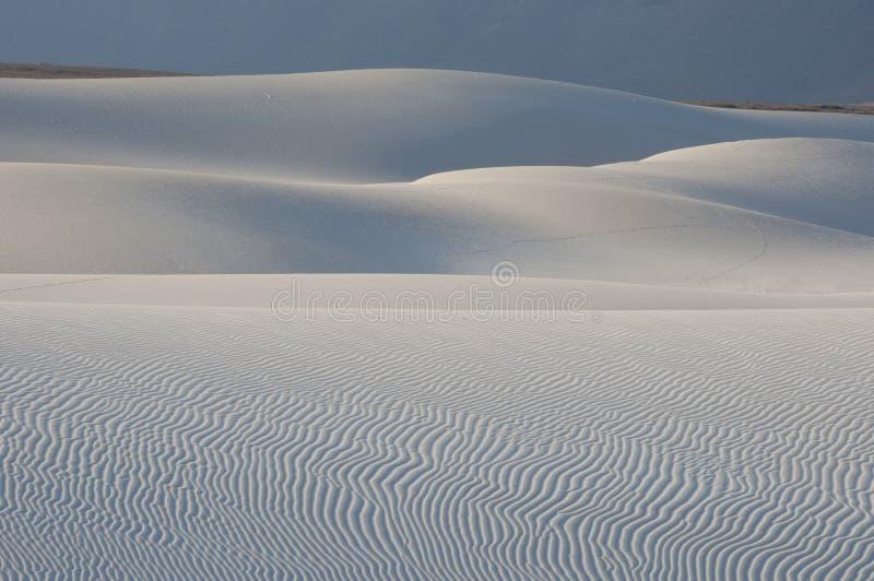 沙丘在索科特拉岛 图库摄影
