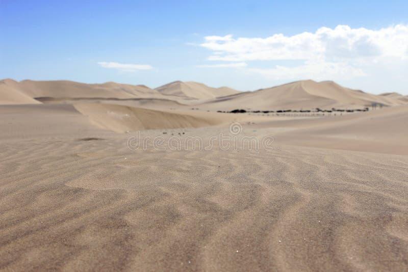 沙丘在纳米比亚沙漠非洲 免版税图库摄影