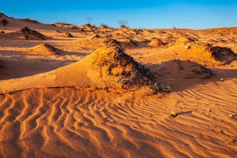 沙丘在美奈 免版税图库摄影