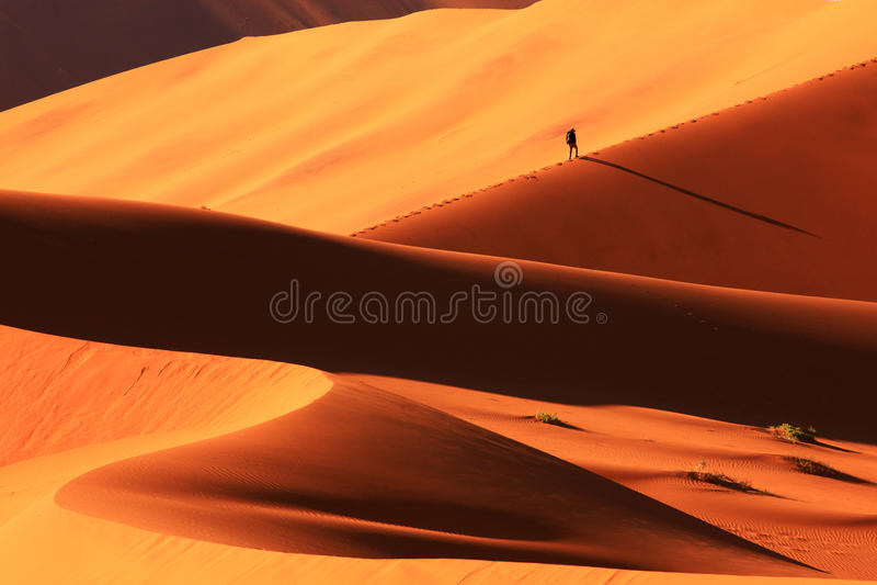 沙丘在Sossusvlei 库存照片
