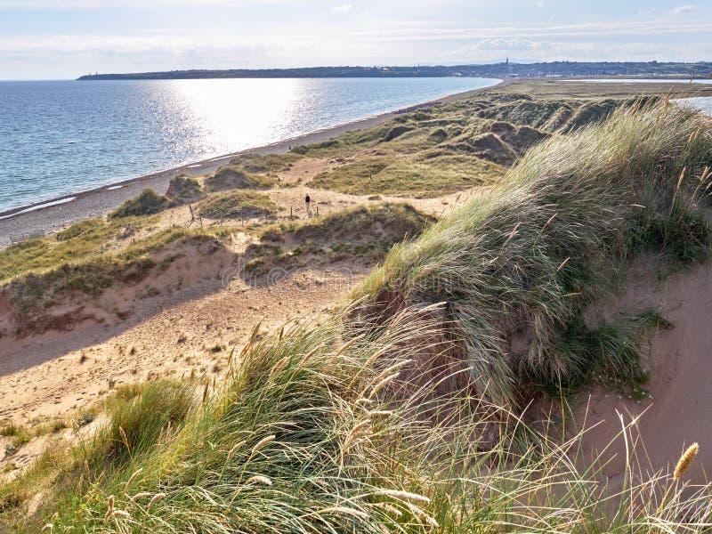 沙丘在Tramore,爱尔兰 免版税库存照片
