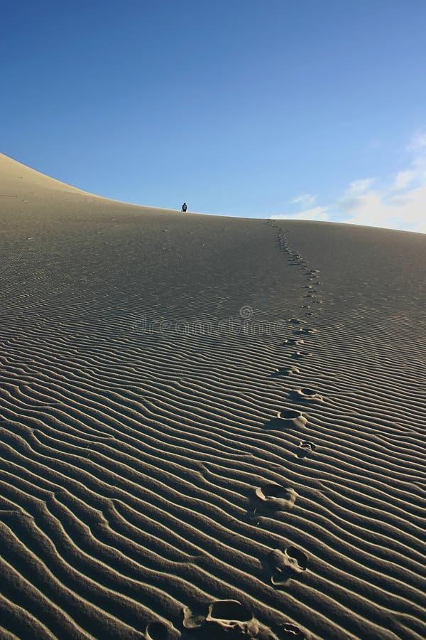 沙丘尤里卡沙子 免版税库存图片