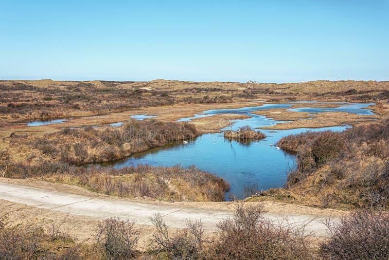 沙丘市分的您能看到荷兰的等高有的地方 免版税库存照片