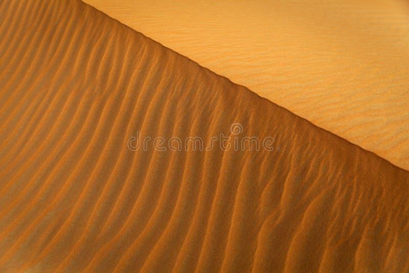 沙丘样式 图库摄影