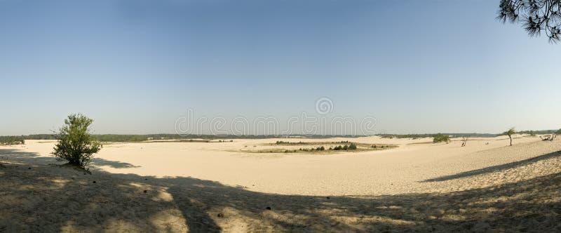 沙丘横向 库存图片