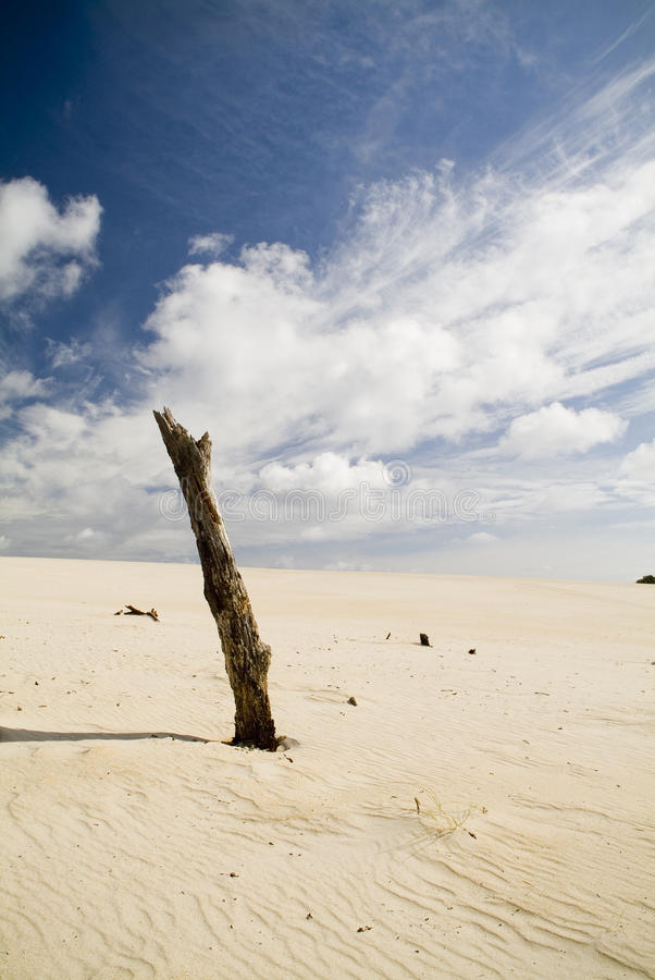 沙丘沙子天空 免版税库存图片