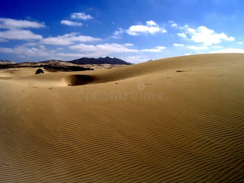 沙丘沙子 免版税库存图片