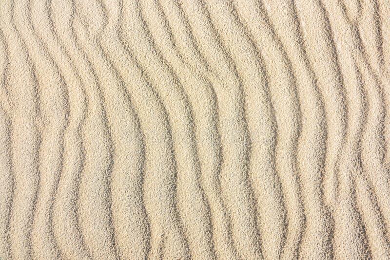 沙丘的纹理 库存图片