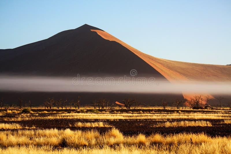 沙丘纳米比亚 库存图片