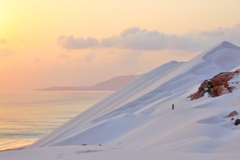 沙丘铺沙白色 库存照片