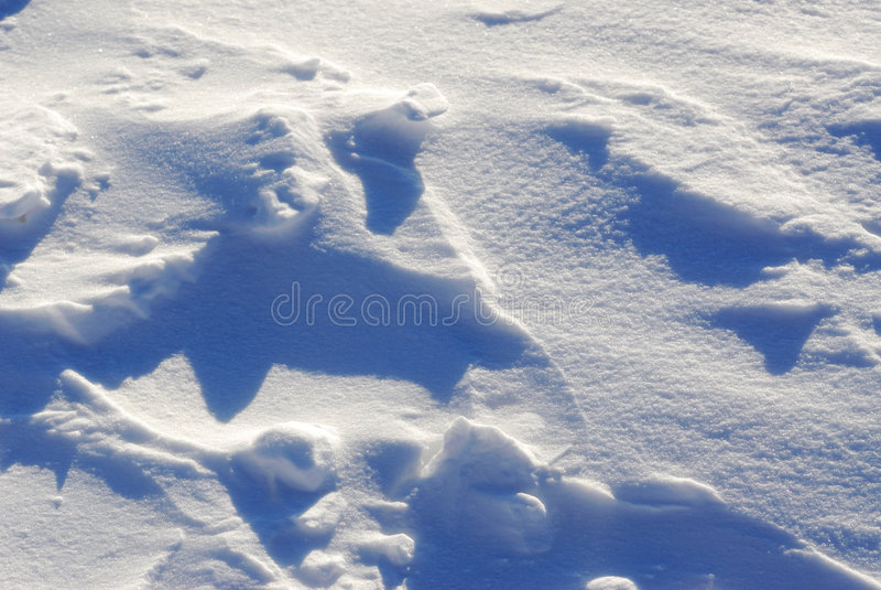 沙丘雪 免版税库存图片