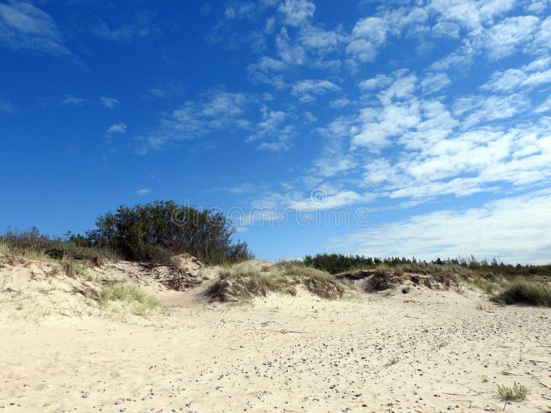 沙丘临近波罗的海,立陶宛 库存照片