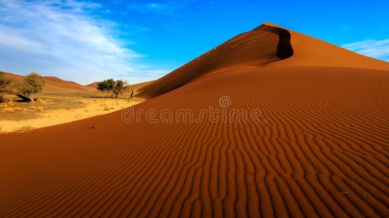 沙丘45, Sossusvlei,纳米比亚 库存照片
